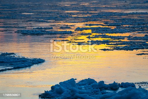 Melting ice flowing on water surface. Ice drift on the river. Global warming.