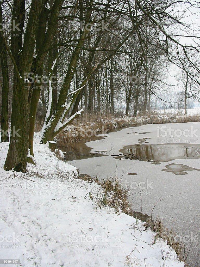 Melting pond royalty-free stock photo