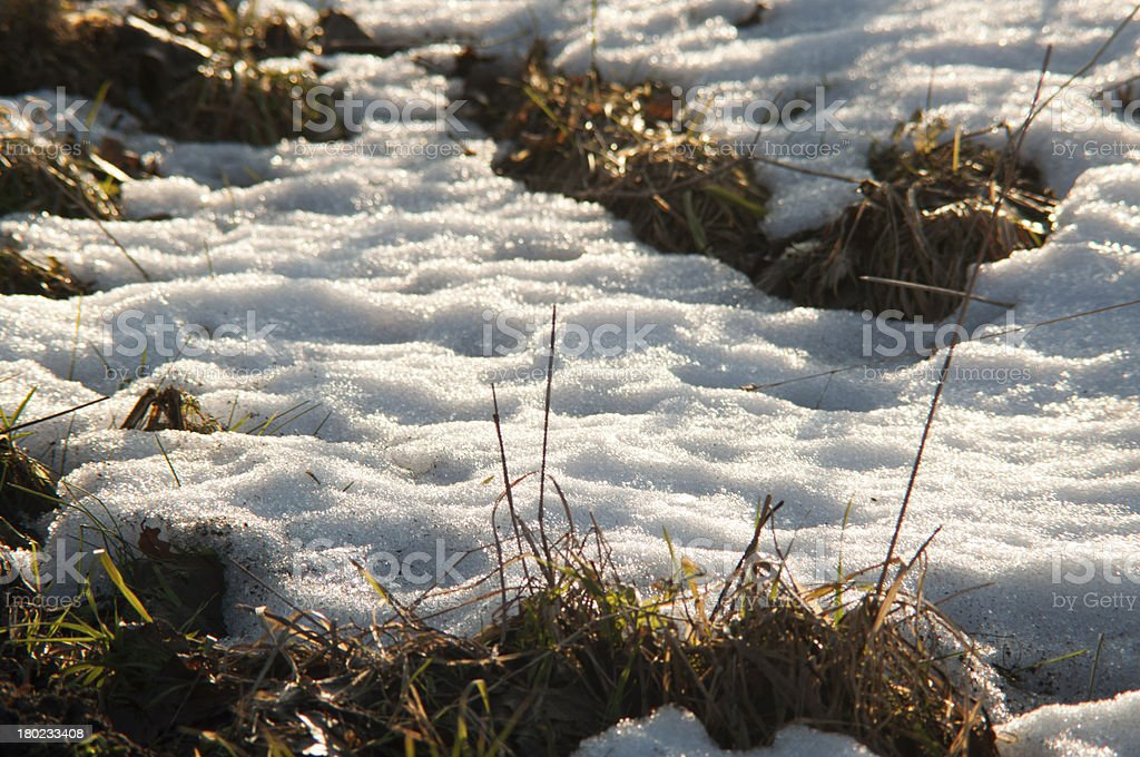 Melting snow on the meadow royalty-free stock photo