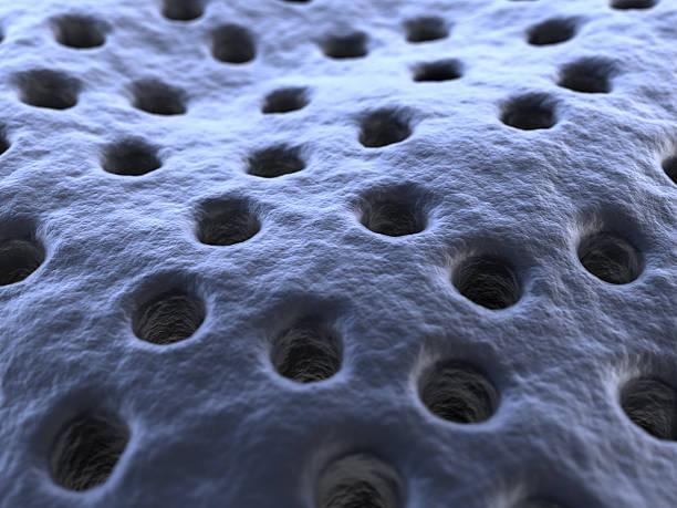membrane stock photo