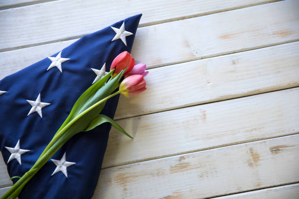 Memorial Day Folded American Flag on White wooden Table with Tulips stock photo