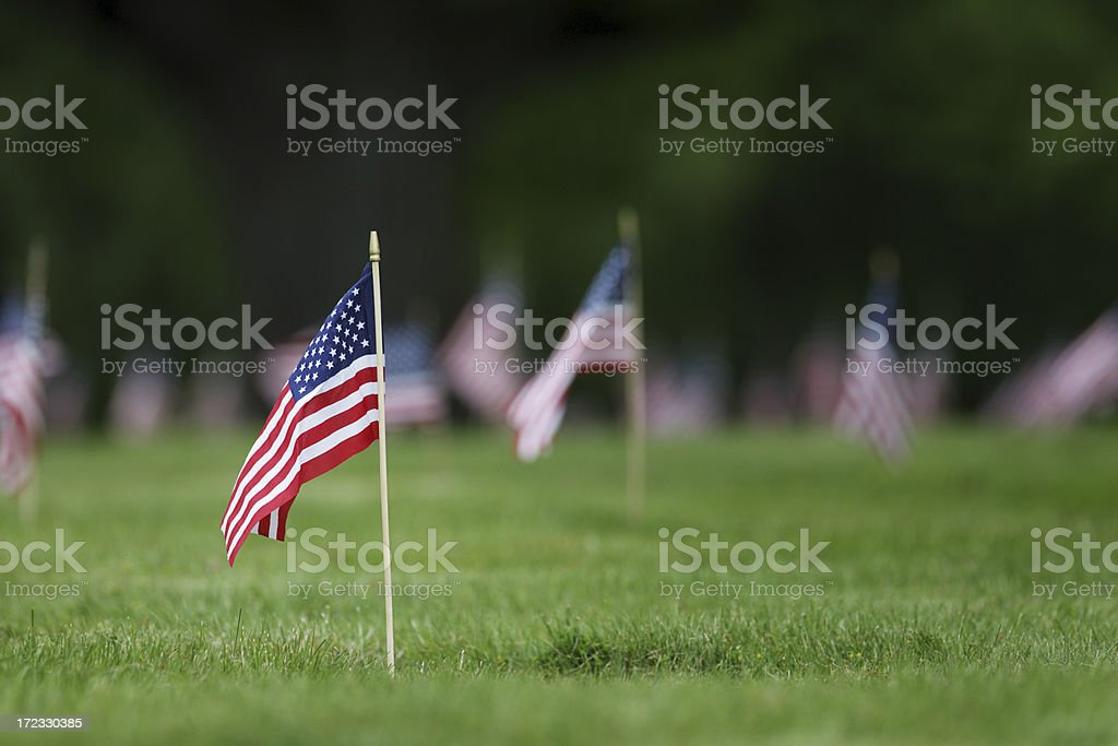 Memorial Day grave site flags. stock photo