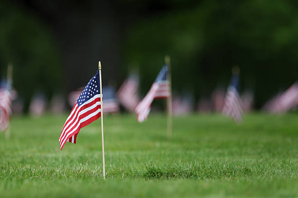 memorial day grave site flags. - memorial day stock pictures, royalty-free photos & images