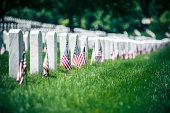 Memorial Day in Arlington National Cementery, Washington DC. USA.