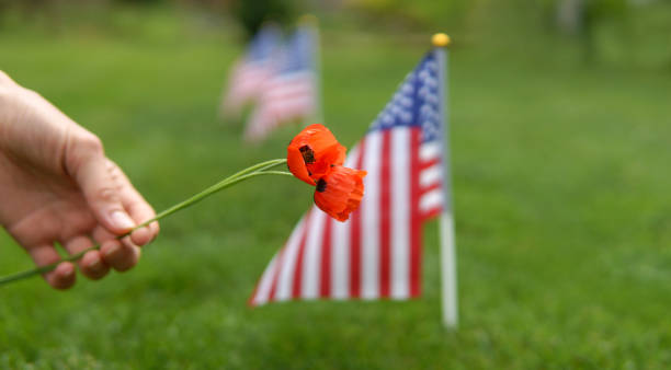memorial day. - family 4th of july zdjęcia i obrazy z banku zdjęć