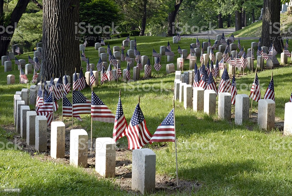 Memorials that are all the same each with an American flag stock photo
