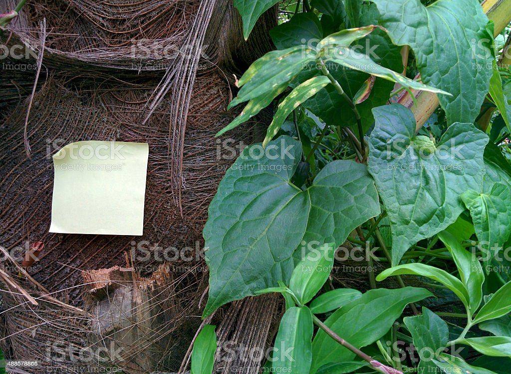 Memory note 9.1 stock photo