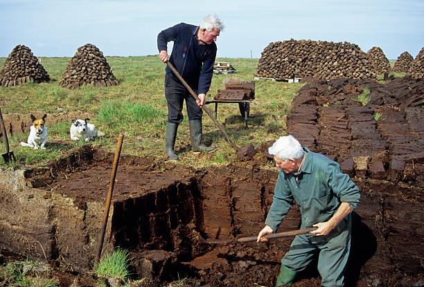 Men cutting turf from bog in Irish Republic stock photo