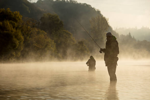 Men fishing in river with fly rod during summer morning. Men fishing in river with fly rod during summer morning. Beautiful fog. casting stock pictures, royalty-free photos & images