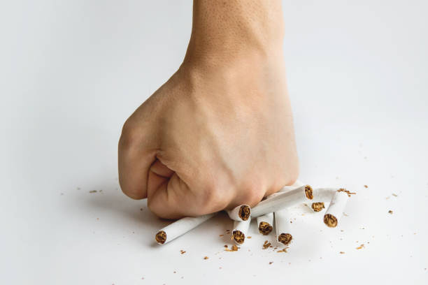 Men hand crushed some cigarettes, Men hand crushed some cigarettes, No Smoking, Quitting smoking and healthy lifestyle. Guy breaks a cigarette with fingers on white background. The harm of Smoking. To quit Smoking. smoking issues stock pictures, royalty-free photos & images