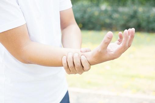 Apa Perbedaan Tulang Hasta dan Tulang Pengumpil Berdasarkan Letaknya