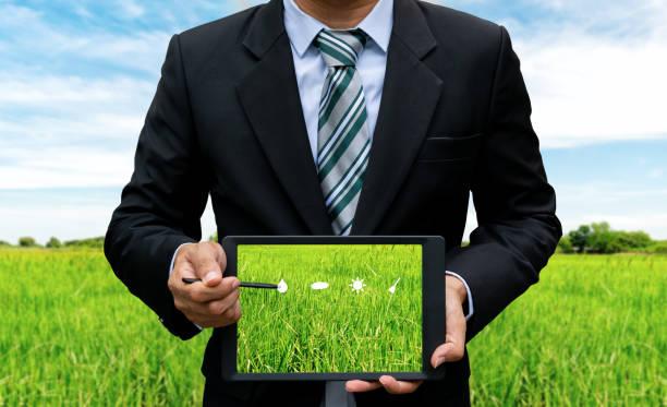 männer halten touchscreen tablet-technologie, die anpflanzung von bäumen - origami mobil stock-fotos und bilder