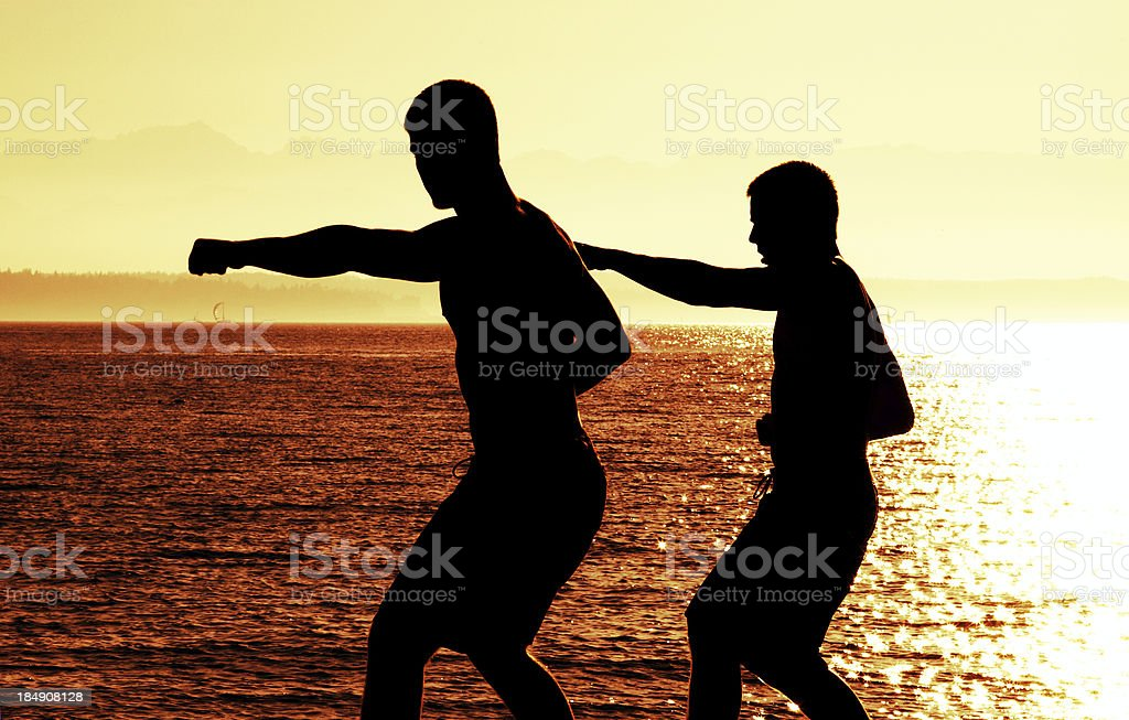 Men Practicing Martial Arts - Silhouette royalty-free stock photo