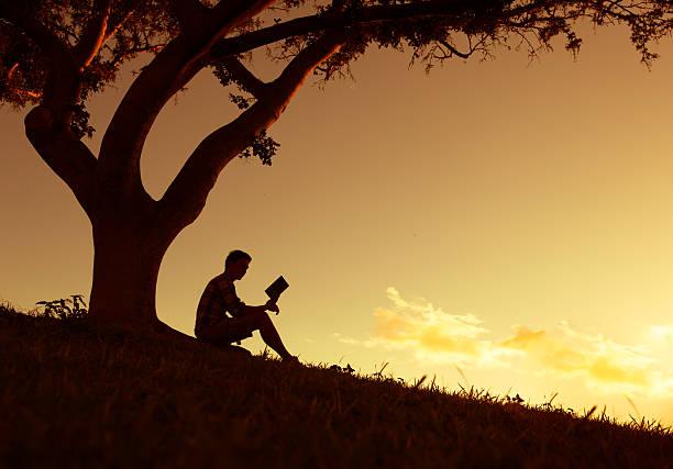 Men reading in the park stock photo