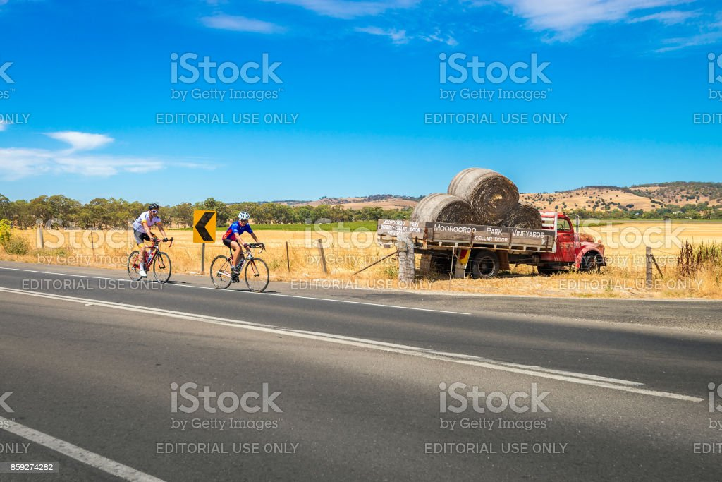 Men riding bicycles in Barossa Valley, South Australia stock photo