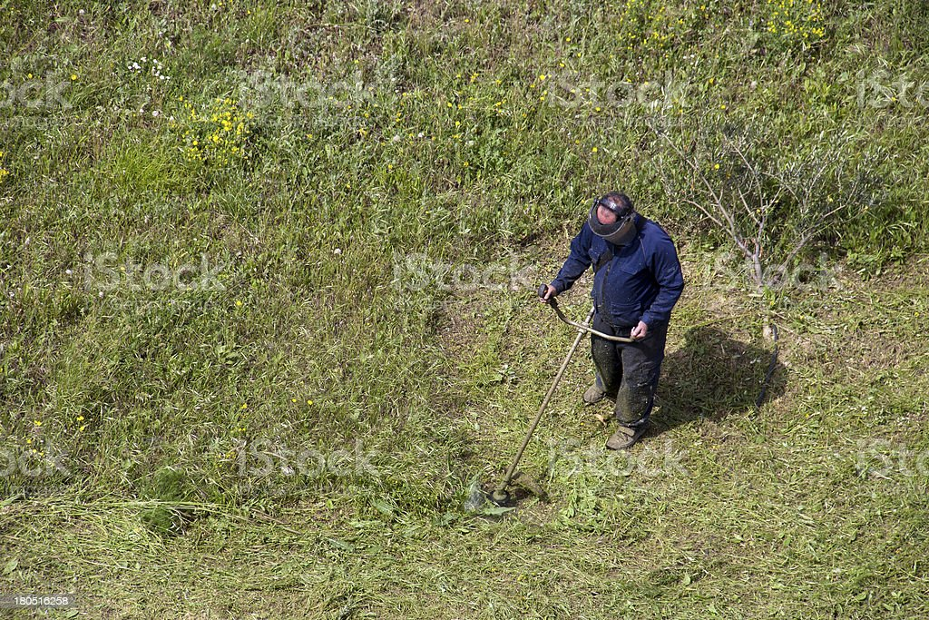 Men with lawn mower trimming grass in the field royalty-free stock photo