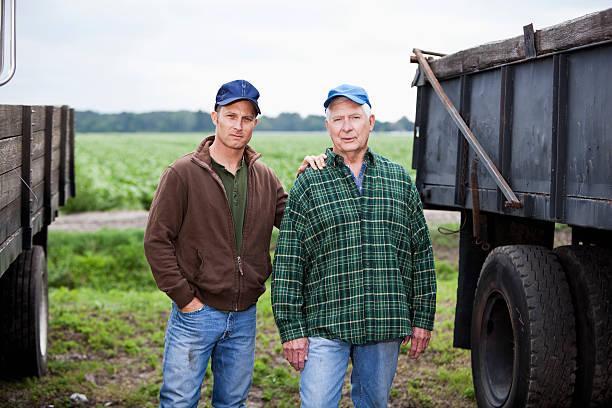 männer arbeiten an einem kartoffel farm, lkws - alte wagen stock-fotos und bilder