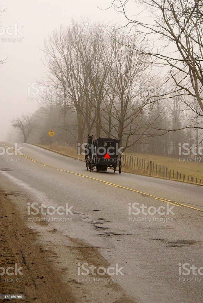 Mennonite Buggy royalty-free stock photo