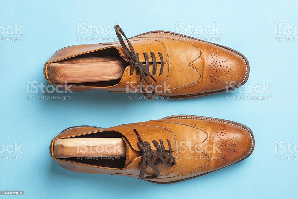 Mens Dress Shoes stock photo