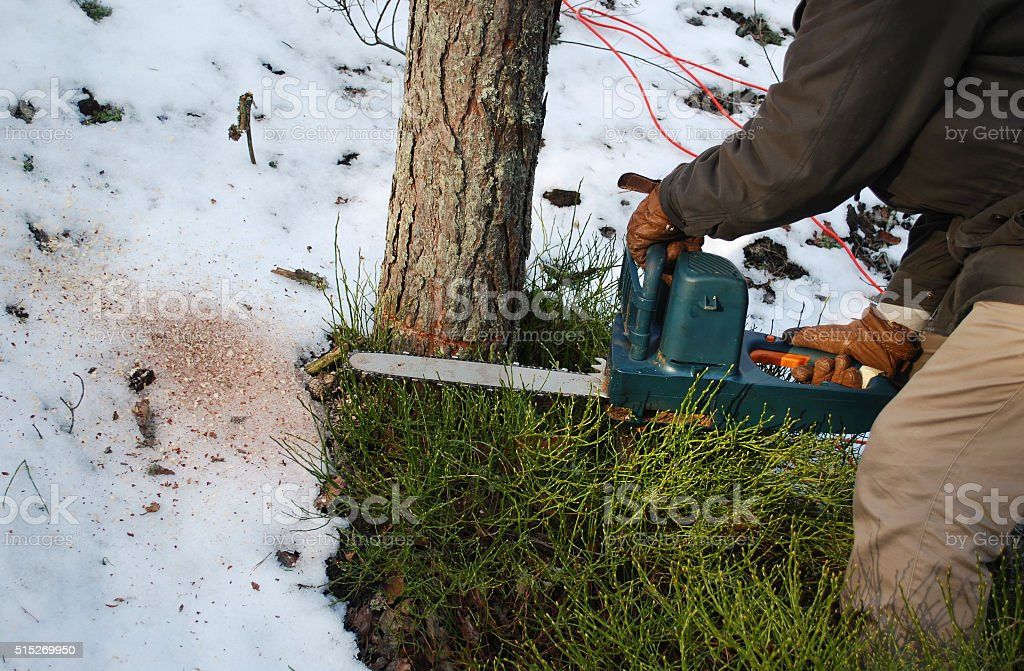 Men's hands hold the saw. stock photo