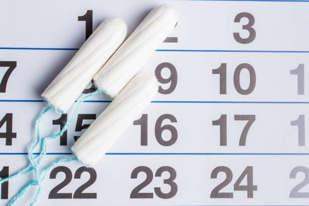 menstruationskalender mit tampons und pads. zeit der menstruation. hygiene und schutz - planner inserts stock-fotos und bilder