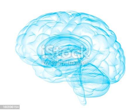 [b]transparent human brain on white background[/b]  [i]similar[/i] [url=http://www.istockphoto.com/stock-photo-22234937-mental-clarity.php][img]http://i.istockimg.com/file_thumbview_approve.php?size=2&id=22234937[/img][/url]   [i]more brain concepts[/i] [url=http://www.istockphoto.com/stock-photo-22537237-brainwashing.php][img]http://i.istockimg.com/file_thumbview_approve.php?size=1&id=22537237[/img][/url]    [url=http://www.istockphoto.com/stock-photo-22540572-master-mind.php][img]http://i.istockimg.com/file_thumbview_approve.php?size=1&id=22540572[/img][/url]   [url=http://www.istockphoto.com/stock-photo-22540608-precious-mind.php][img]http://i.istockimg.com/file_thumbview_approve.php?size=1&id=22540608[/img][/url]