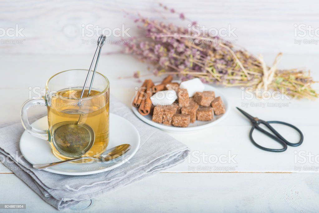 Mentha pulegium or pennyroyal tea stock photo