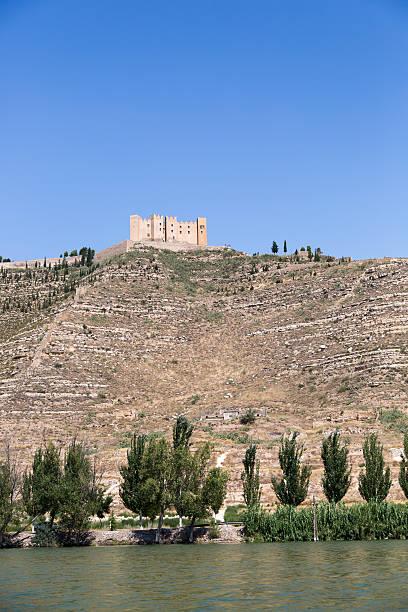 Mequinenza castle stock photo