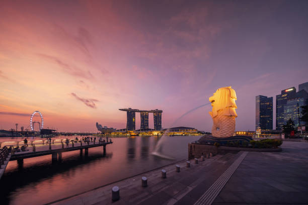singapore city - july 29, 2018 : merlion and marina bay sands at sunrise with singapore flyer and twilight sky. - singapore foto e immagini stock