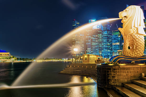 Merlion at Merlion Park at night Singapore, Singapore - March 1, 2016: Merlion at Merlion Park at Marina Bay in Singapore at night. Skyline with skyscrapers on the background. Illuminated with light at night merlion statue stock pictures, royalty-free photos & images