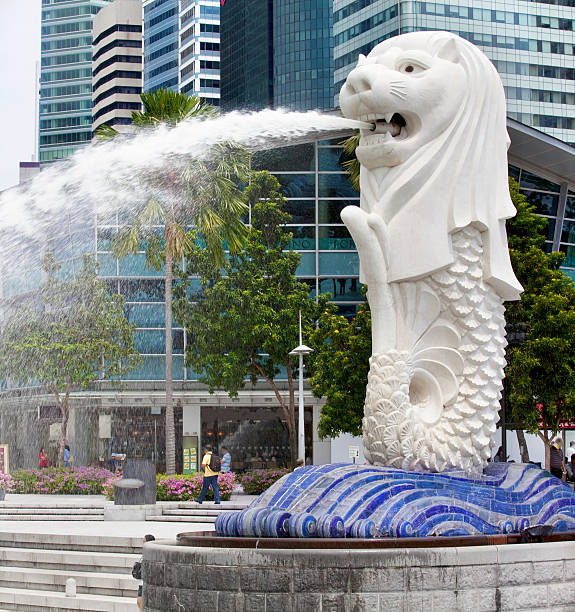 Merlion Fountain, Singapore Singapore, Singapore, June 18, 2011 - The Merlion is Singapore's national mascot and represents Singapore's history as a fishing village. This Fountain is located in Merlion park in the central business district, it is a popular tourist destination. People visible in the image. merlion fictional character stock pictures, royalty-free photos & images