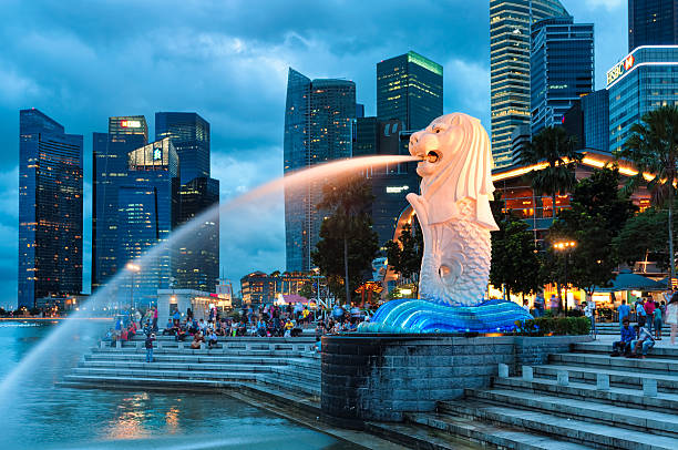 Merlion Singapore, Singapore - December 22, 2013: The Merlion fountain lit up at night in Singapore. merlion fictional character stock pictures, royalty-free photos & images