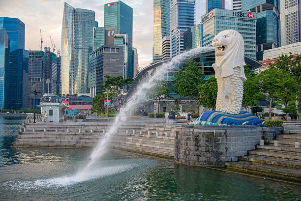 Merlion Statue Singapore, Singapore - May 21, 2016: silhouette of Merlion Statue at Marina Bay against the sunrise. Merlion is a well known marketing icon of Singapore depicted. merlion fictional character stock pictures, royalty-free photos & images