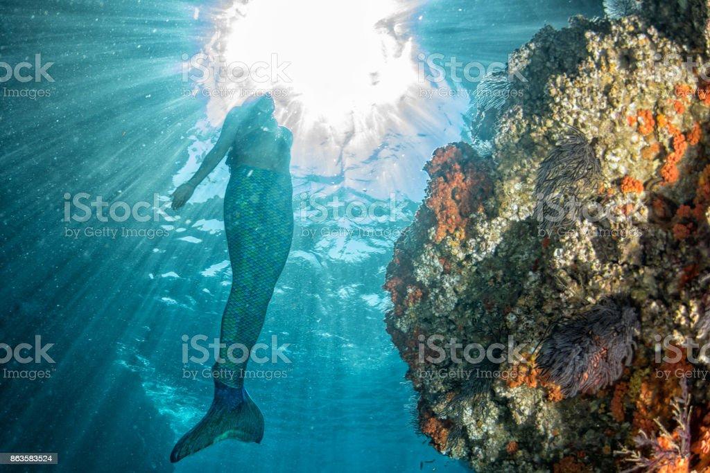 Mermaid swimming underwater in the deep blue sea stock photo