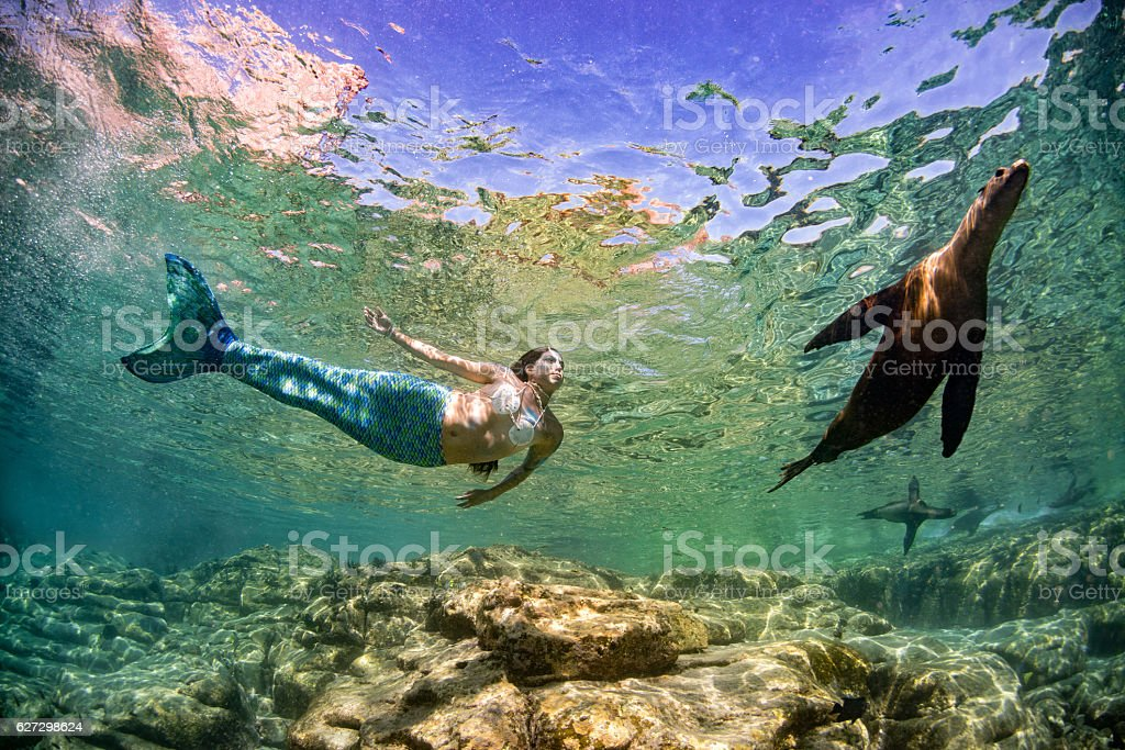 Mermaid swimming underwater in the deep blue sea with seal stock photo