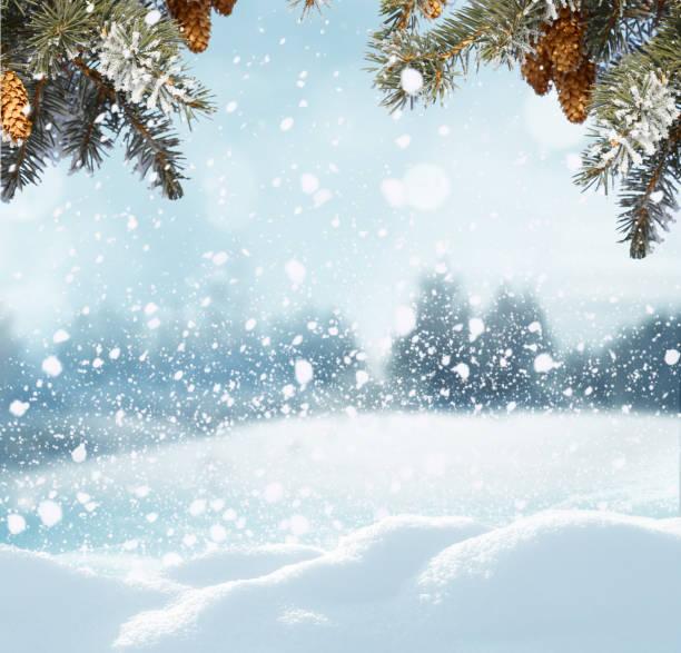 frohe weihnachten und glückliches neues jahr gruß hintergrund. winterlandschaft mit tanne zweig - es schneit text stock-fotos und bilder