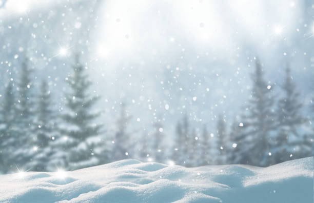 merry christmas and happy new year greeting background with copy-space.beautiful winter landscape with snow covered trees. - composizione orizzontale foto e immagini stock