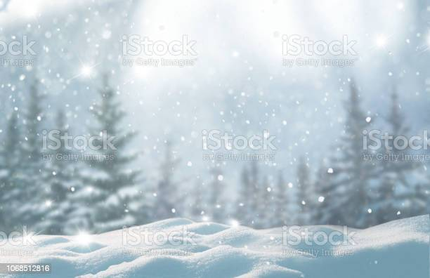 Photo of Merry christmas and happy new year greeting background with copy-space.Beautiful winter landscape with snow covered trees.