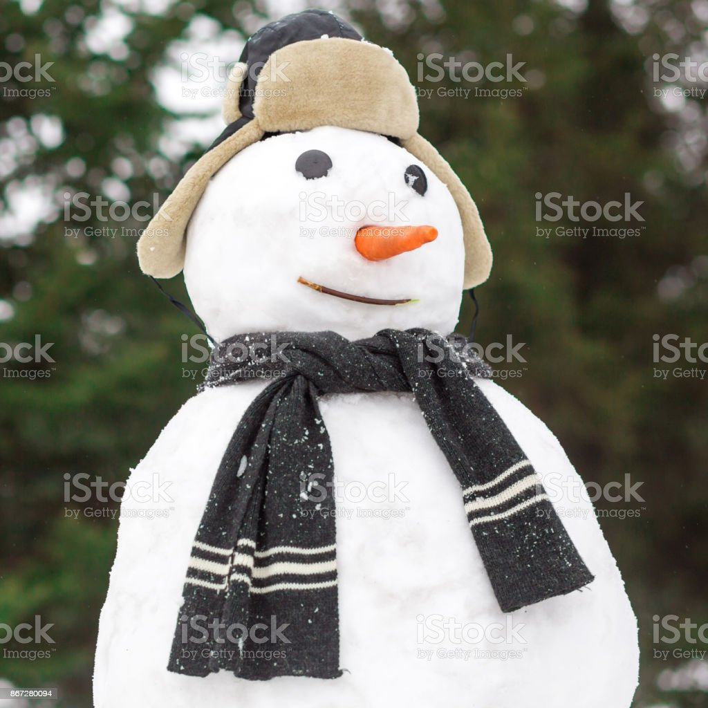 Merry christmas and happy new year greeting card with funny snowman
