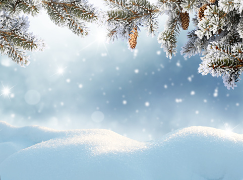 Merry Christmas and happy new year greeting card. Winter landscape with snow .