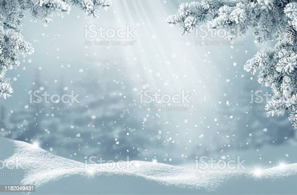 Photo of Merry Christmas and happy new year greeting card. Winter landscape with snow .Christmas background with fir tree branch