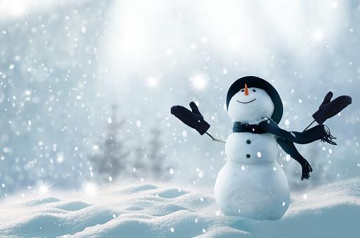 С Рождеством Христовым И С Новым Годом Поздравительная Открытка С Копиейпространство Счастливый Снеговик Стоящий В Зимнем Рождественск — стоковые фотографии и другие картинки Pinaceae