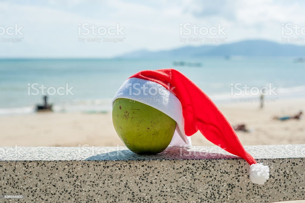 Merry Christmas And Happy New Year On The Summer Beach Stock Photo Download Image Now Istock