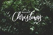 istock Merry Christmas Calligraphy Over Evergreen Branches Covered in Snow 882575448