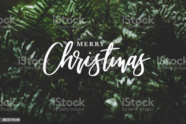 Merry christmas calligraphy over evergreen branches covered in snow picture id882575448?b=1&k=6&m=882575448&s=612x612&h=uhpiomoaencb9frsrtb5qvm7esvashswlczhq osziu=