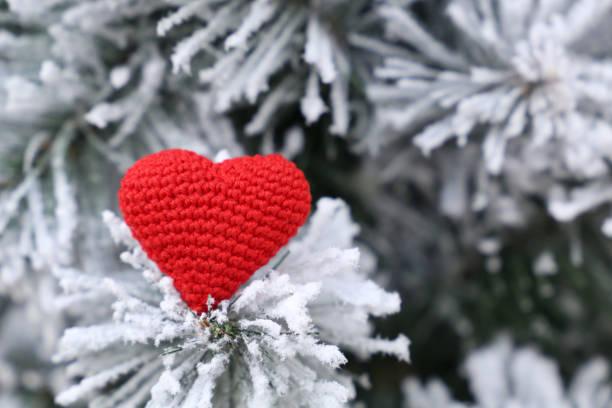 merry christmas card gestrickt rot herz im schnee auf den tannenzweigen - weihnachtsspende stock-fotos und bilder