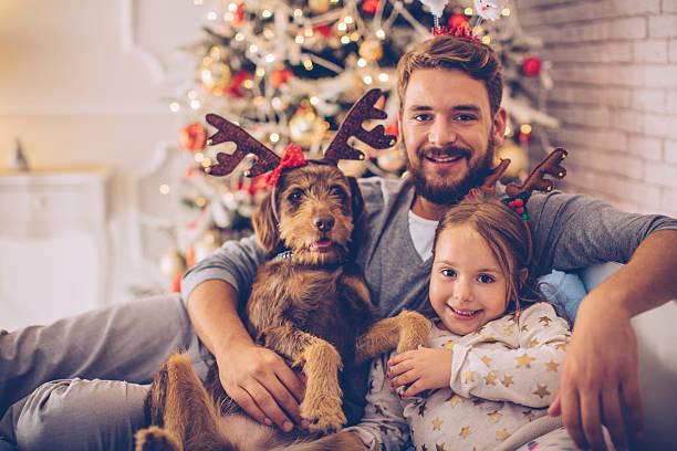 merry christmas everyone! - weihnachten 7 jährige stock-fotos und bilder