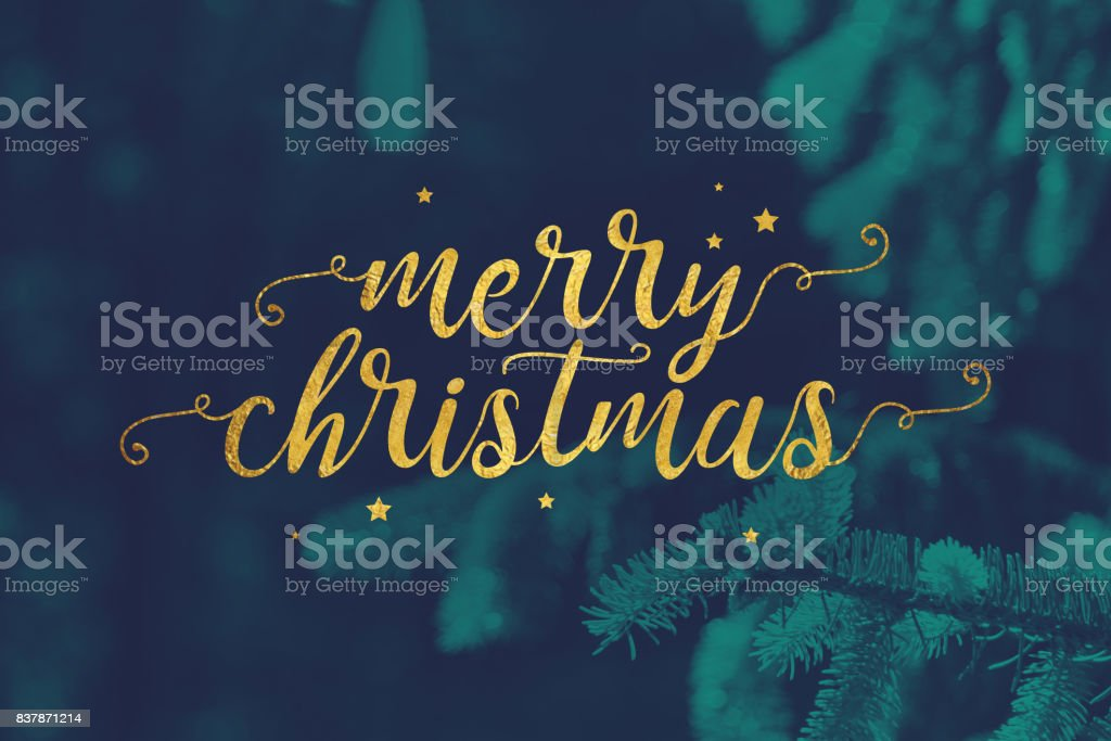 Merry Christmas Script with Evergreen Branches Background stock photo