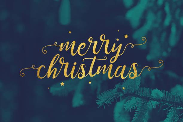 frohe weihnachten-skript mit immergrünen zweigen hintergrund - weihnachtskarte stock-fotos und bilder