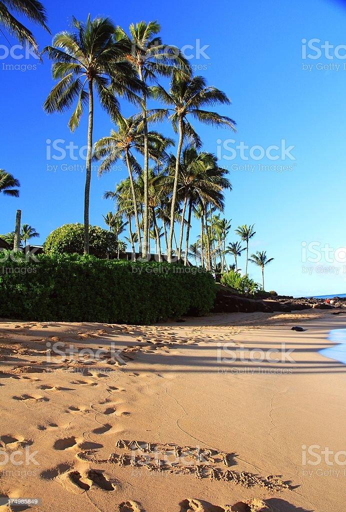 Frohe Weihnachten Hawaii.Frohe Weihnachten Schriftliche Auf Maui Hawaii Strandsand Stockfoto